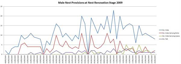 Graph of Male nest Provision 2009
