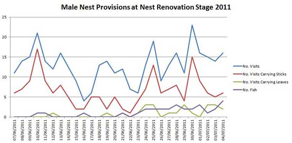 Graph of Male nest Provision 2011