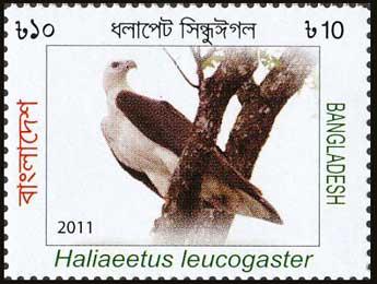 Solomon Islands Eagle Stamp Bangladesh