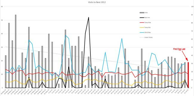 Graph of nest visits 2010
